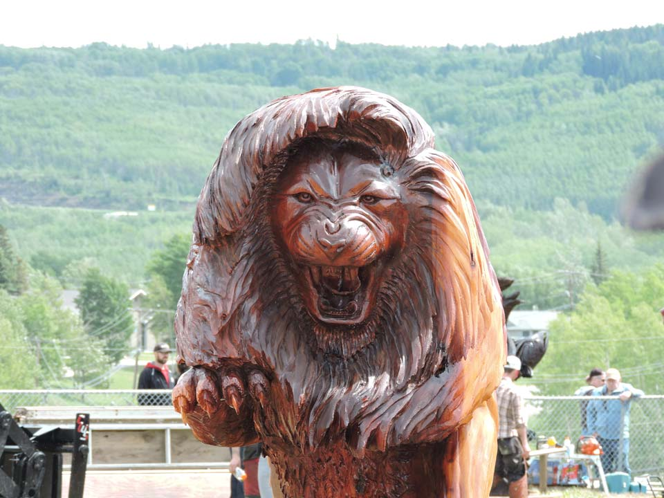 Chainsaw carving Championship